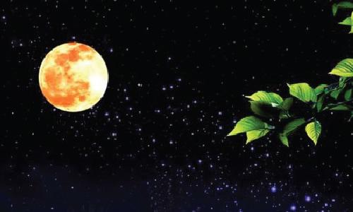 1453959165691090月亮葫芦.jpg
